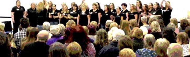 Sing Norfolk   Norfolk Community Choirs Network